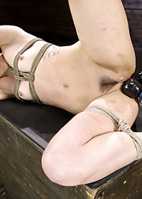 Kink Presents pic 23